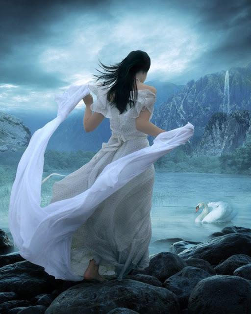 femme cygne bleu